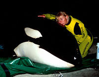 Ingrid & Ben (Sub Adult Male Orca) who beached On Saturday, 14 June 1997